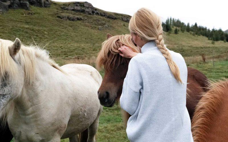 Hesteassistert psykoterapi